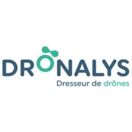 Dronalys